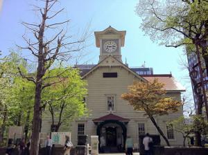 北海道にストレートネック矯正枕代理店オープン